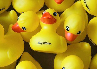 Ray White Rubber Ducks